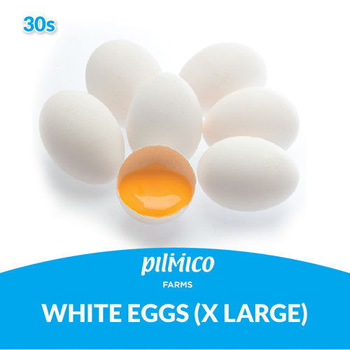 Pilmico Farms White Eggs Extra Large